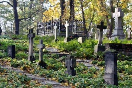 http://media2.nekropole.info/2013/11/Poznan-Cmentarz-Zasluzonych-Wielkopolan--sw-Wojciech-.jpg