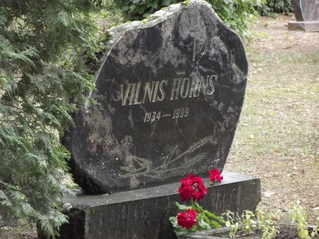 Vilnis Horns
